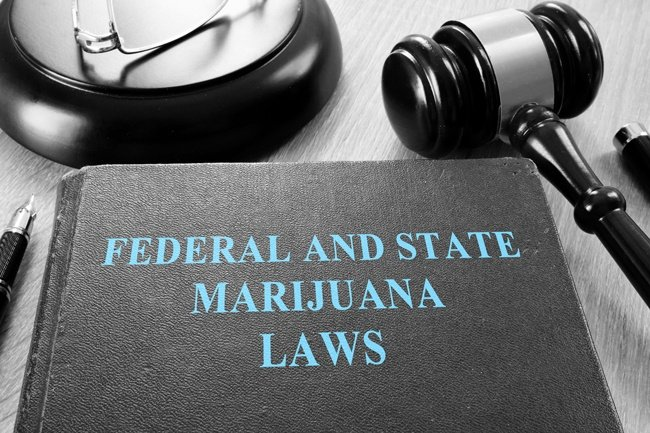 federal-and-state-marijauna-laws-with-gavel